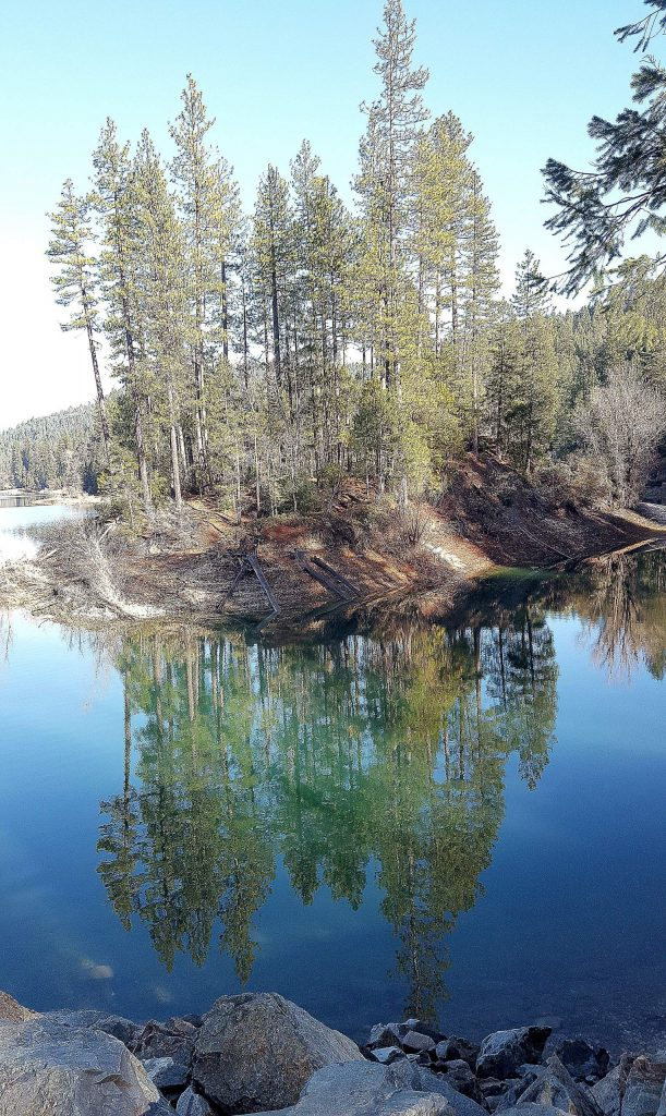 Trees along the shoreline are reflected in a glassy calm Scotts Flat Lake Monday afternoon.