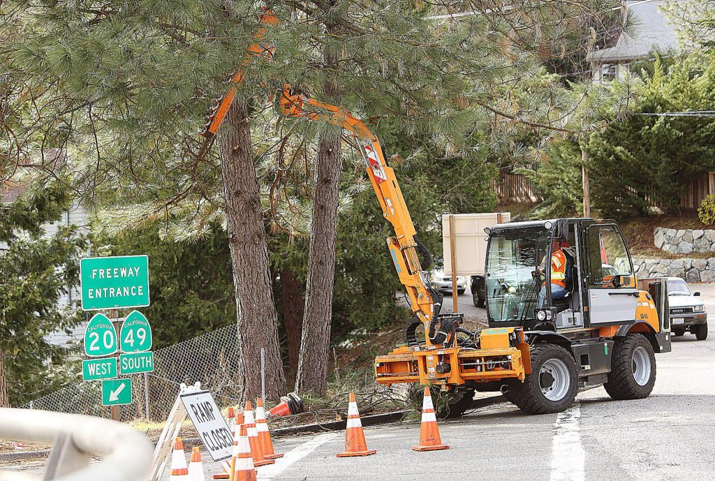 A motorized tree trimmer is used to easily trim the low hanging branches of trees along the Golden Center Freeway Wednesday near the Sacramento Street on-ramp.