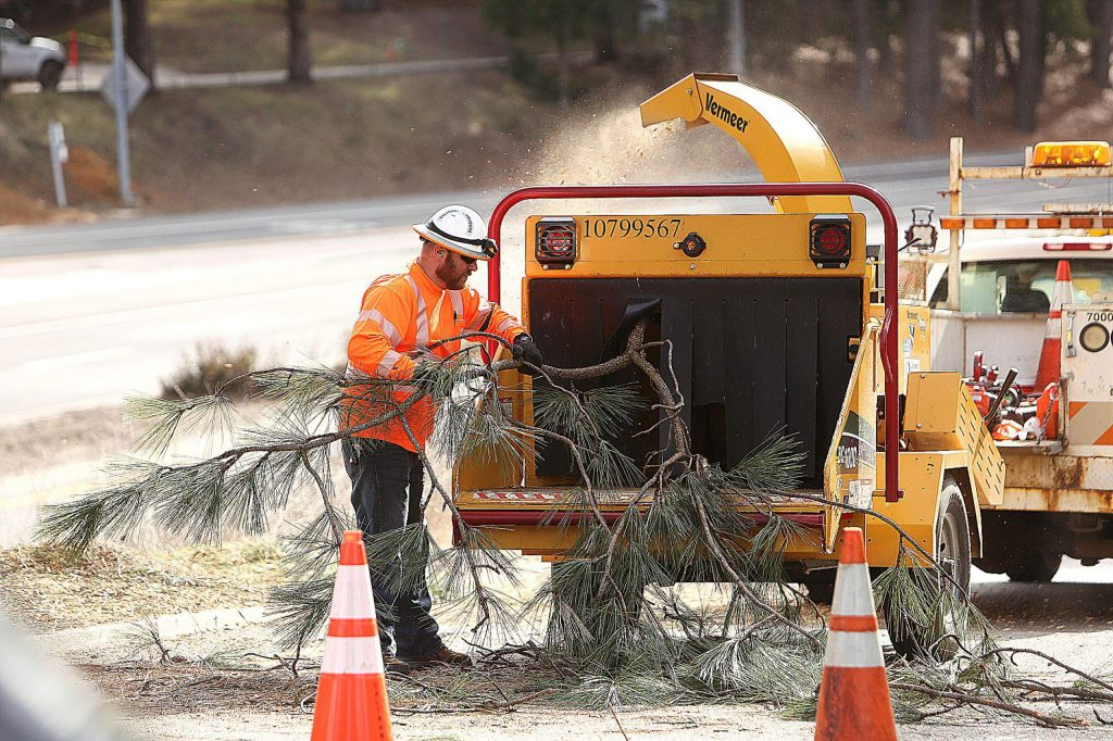 Low hanging nuisance tree branches are turned to saw dust along the Sacramento Street on-ramp during Wednesday's tree branch clearing.