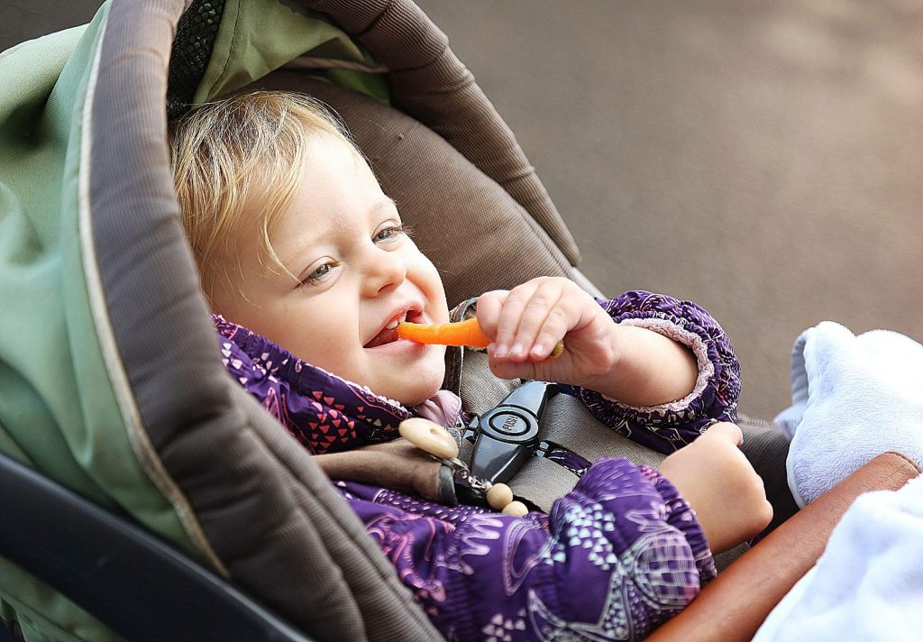 Sixteen-month-old Hazel Kopp munches into a carrot found at the Nevada City Farmer's Market Saturday.