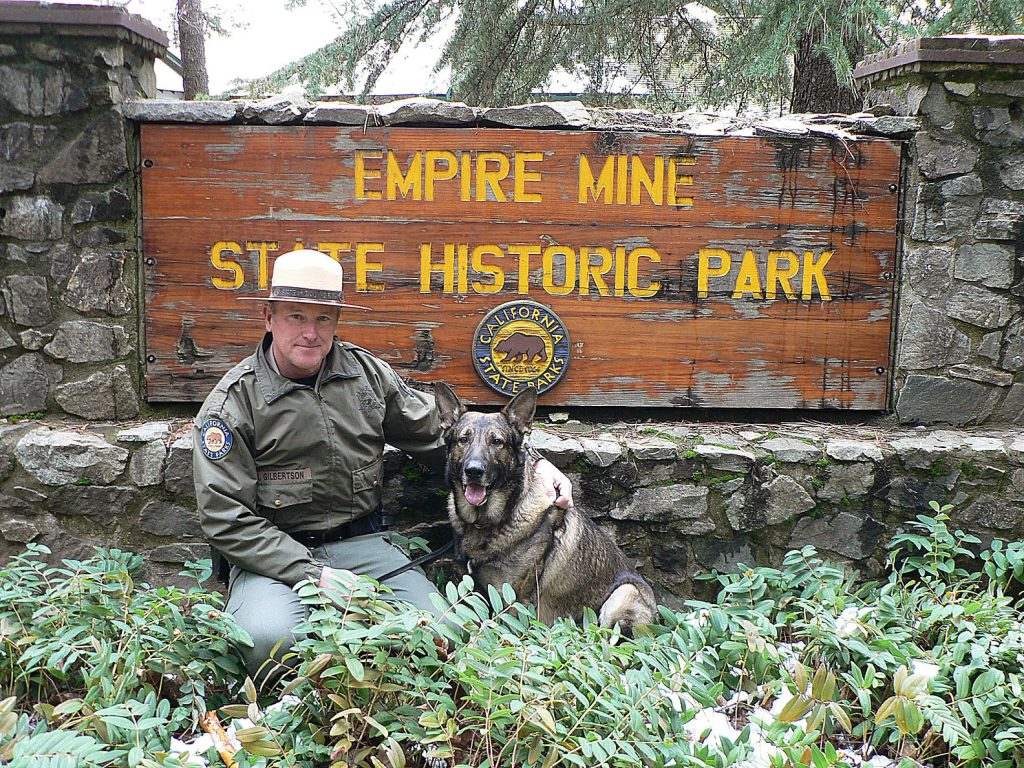 California State Parks Officer Martin Gilbertson and his partner Miro were on patrol at Empire Mine State Historic Park on Dec. 28, just one day before the K-9 was diagnosed with an autoimmune disease that will sideline him for at least six months.