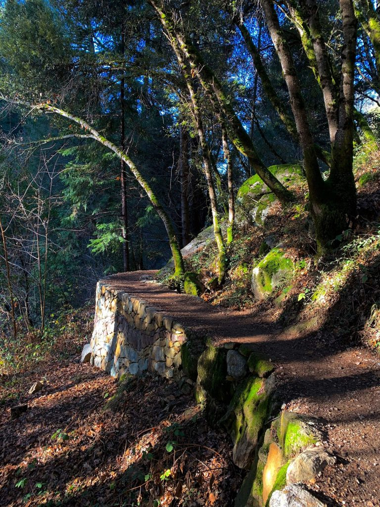 Hiking Tribute Trail in Nevada City Sunday morning (January 5).