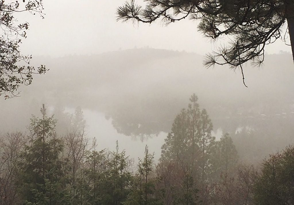 One foggy, soggy morning by the lake.