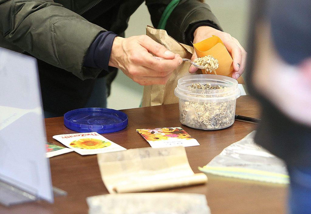 Many different seeds, some from different countries, were made available during Saturday's seed swap at the county library.