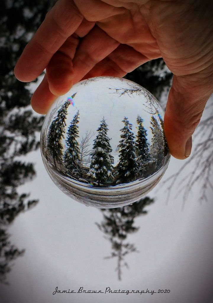 Much needed snow comes to Grass Valley. Photo captured in my snow globe.