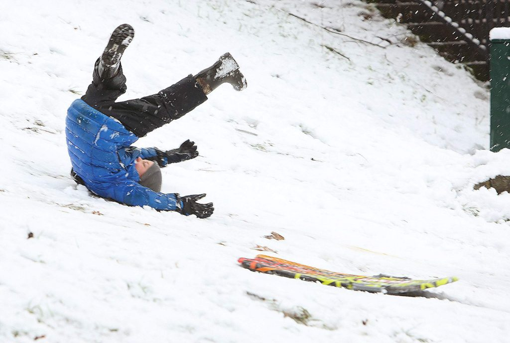 A youngster loses his sled and takes a tumble down a hill at Pioneer Park during Thursday's snow day. Classes across the county were cancelled due to the low snow.