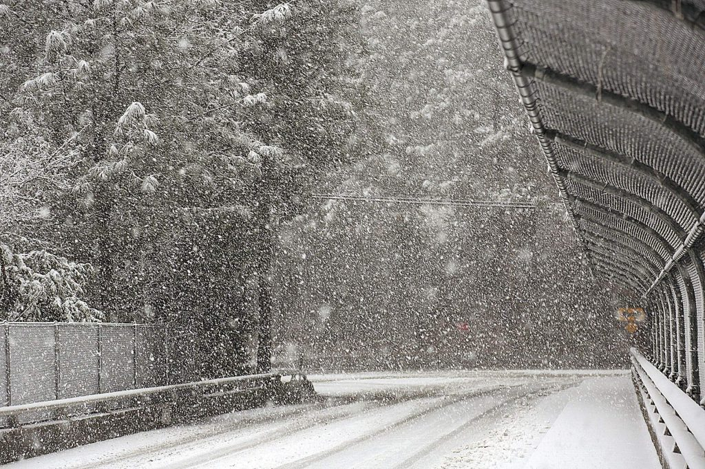 Large snowflakes blanketed much of Nevada County Thursday.