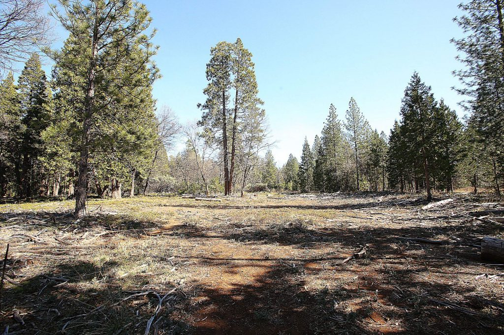 Portions of the Old Nevada City Airport runway can still be seen in the form of treeless meadows off Airport Road in rural Nevada City. The Nevada City Council is currently considering putting a solar farm in this space to be used as a regional source of energy for city residents.