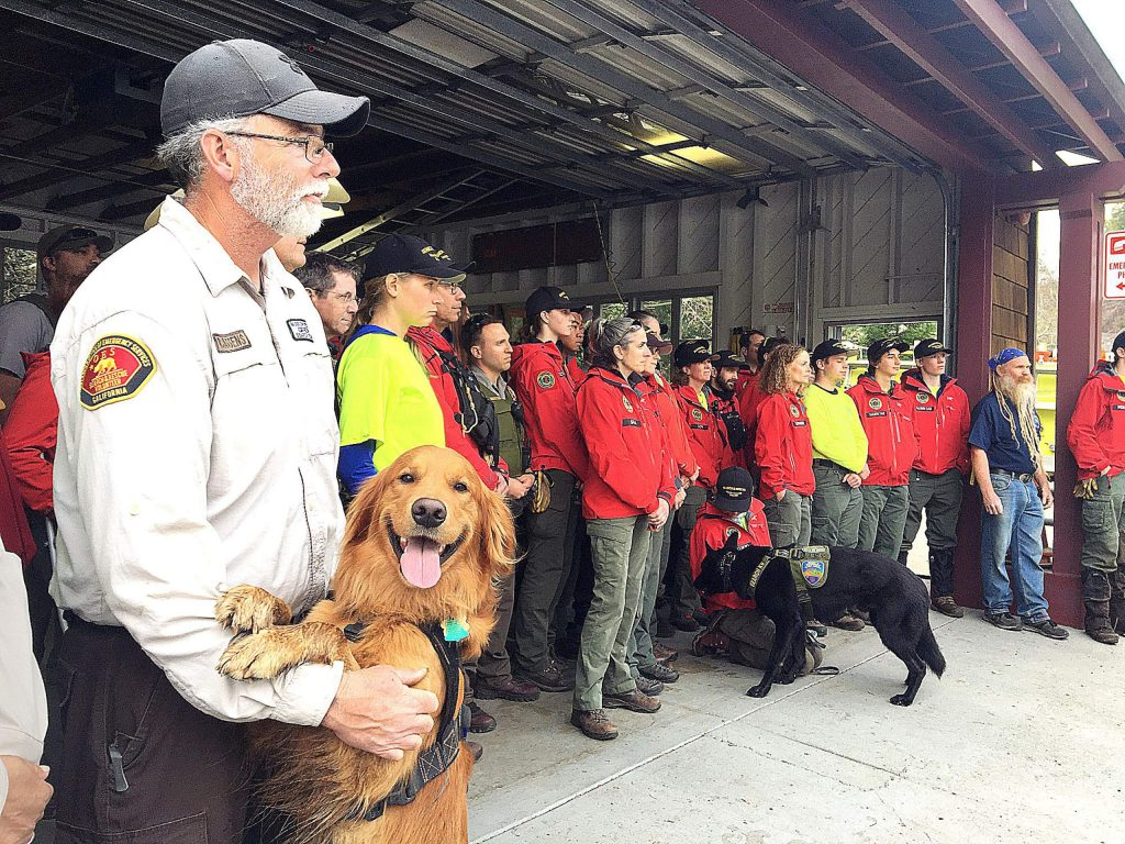 Search and Rescue volunteer Rich Cassens holds his search dog Groot during a press conference at the Inverness Fire Department on Saturday. Cassens and his dog were on the search team which found Carol Kiparsky, 77, and Ian Irwin, 72, who were last seen on Valentine's Day. The couple was transported to a local hospital