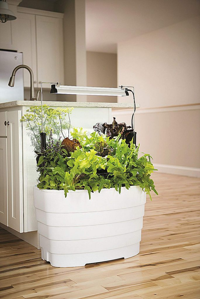 Self-watering planters like the Gardener's Revolution Light Garden make it easy to successfully grow a variety of greens or other edibles indoors.