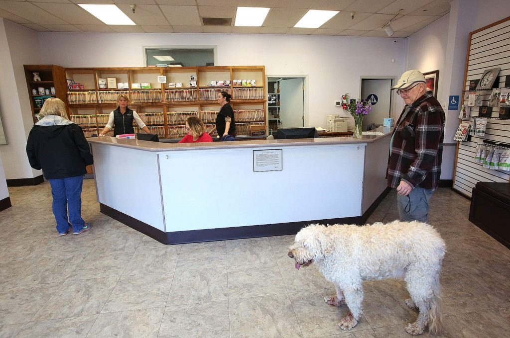 Previous clients of Brunswick Veterinary are happy that the clinic has re-opened in its original location.