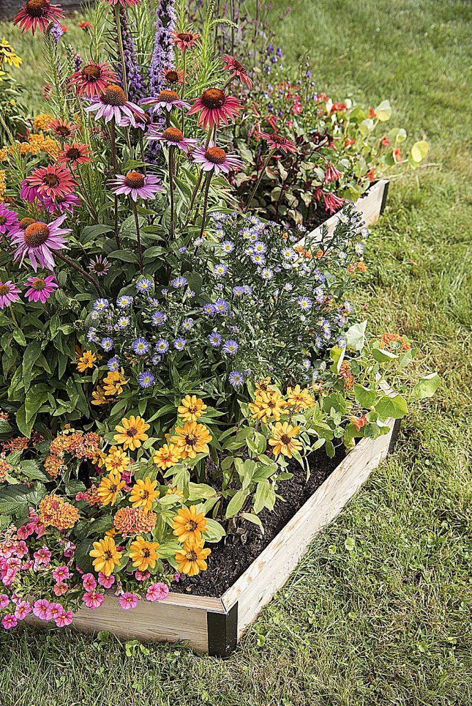 Raised pollinator garden beds can easily be added to any landscape.