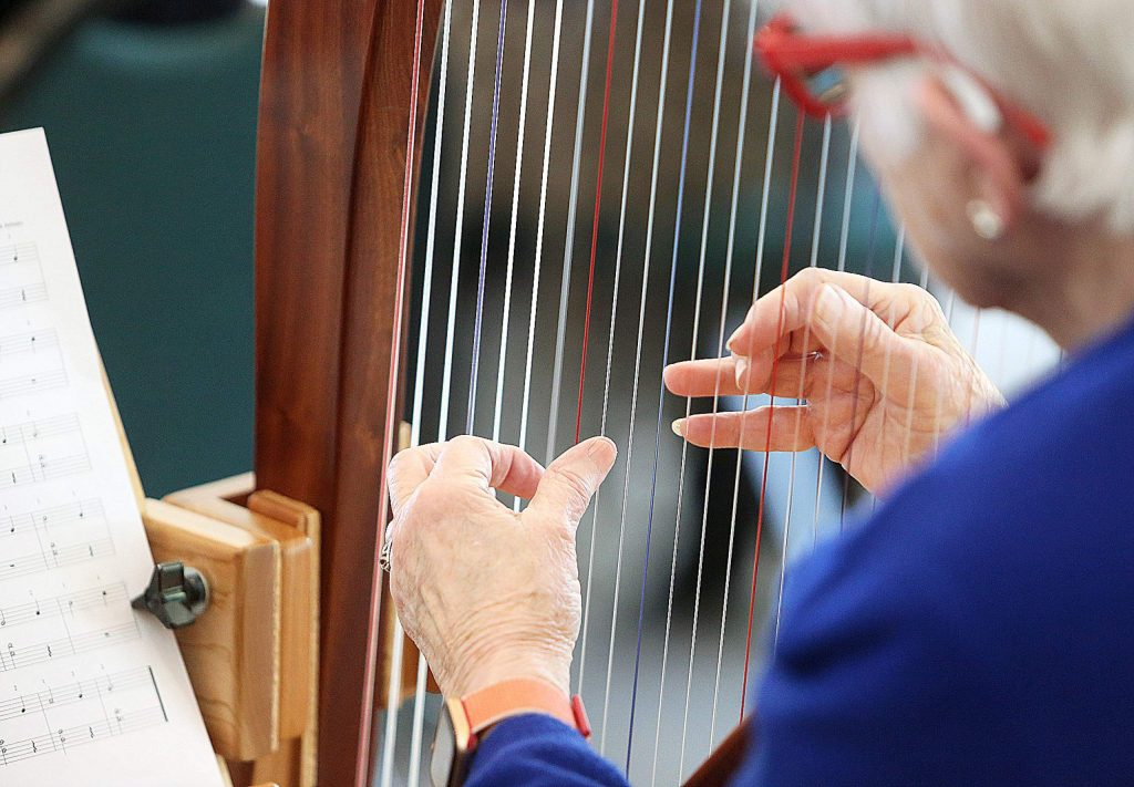 While not exclusively a Sierra Nevada Memorial Hospital harp therapy program, most of the 37 participants were part of the harp therapy group as cancer patients or caregivers taking lessons to be able to play for themselves and others seeking comfort during palliative care.