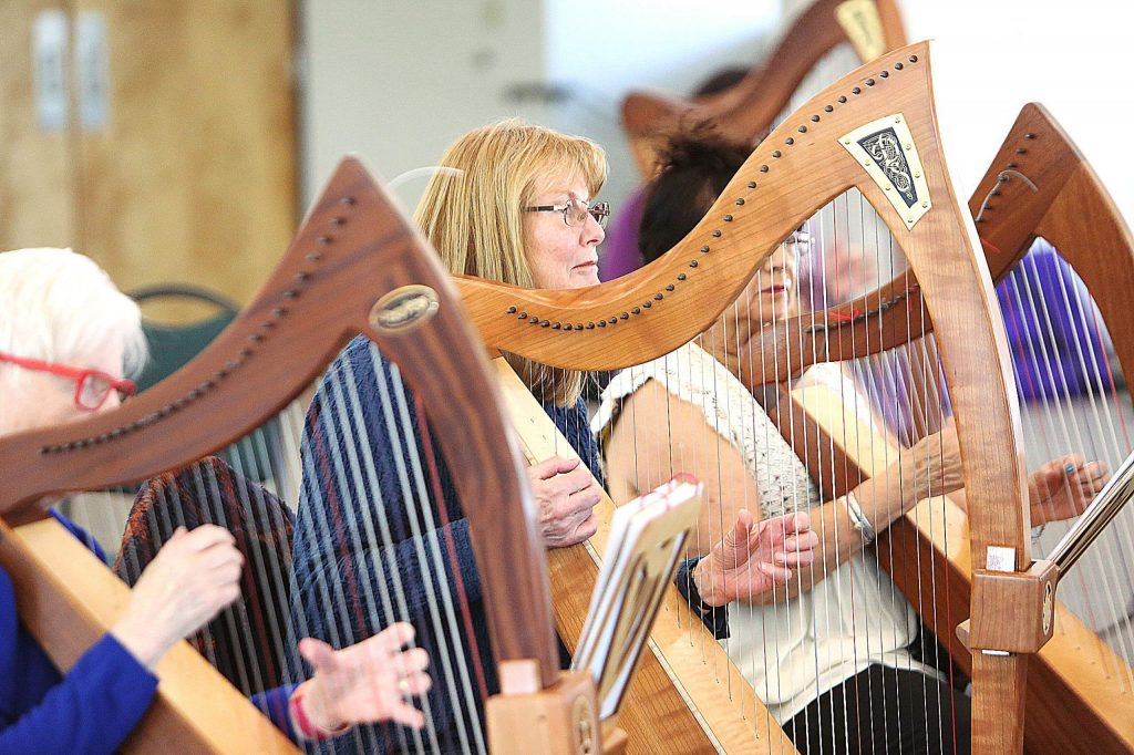 The majority of participants at Friday's workshop are involved with the harp therapy program at Sierra Nevada Memorial Hospital.