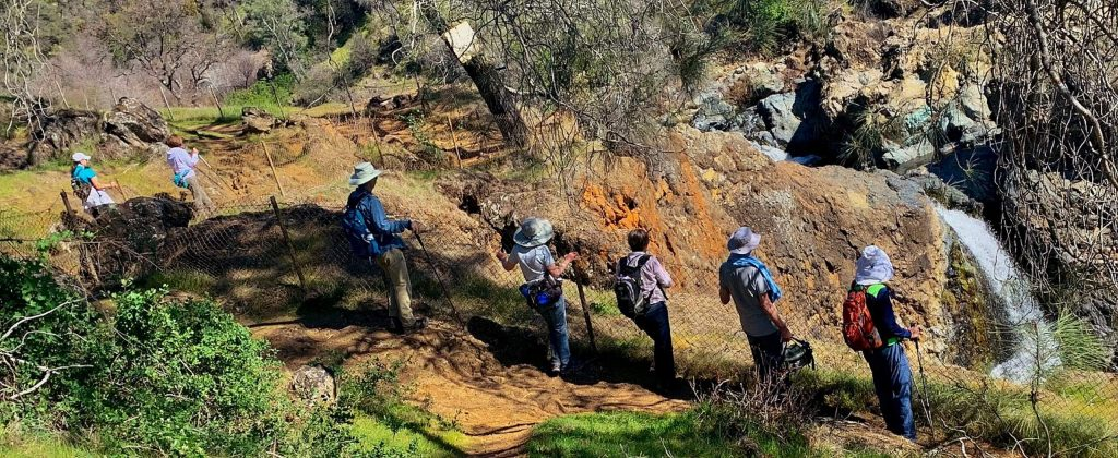 The local German American hiking club looking over Fairy Falls on a very hot day (Thursday, February 27).