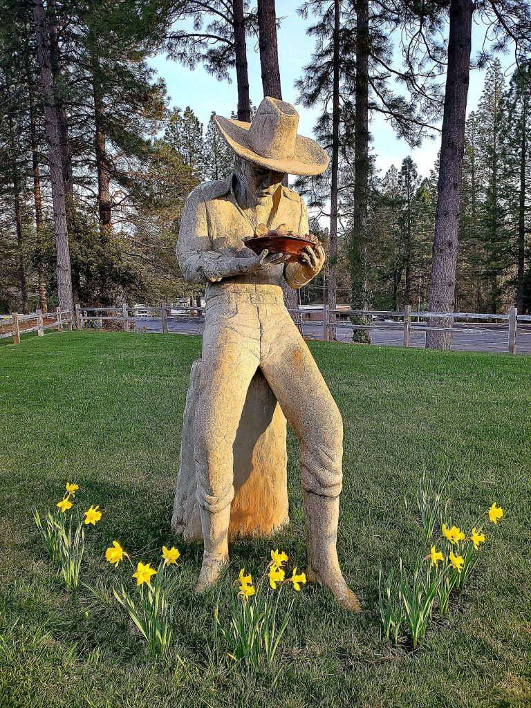 The Miner Statue celebrates Spring at Nevada Union High School.