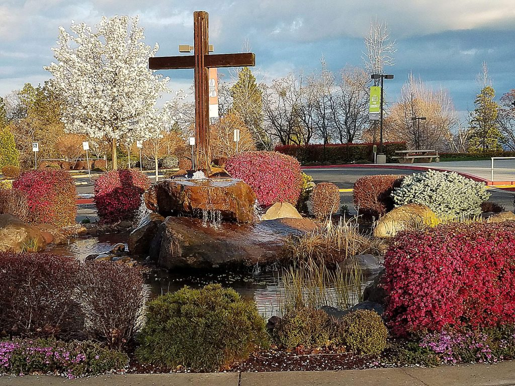 Spring colors at Twin Cities Church.