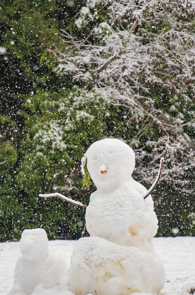 Snowpeople practicing social distancing at Forest Charter School Nevada City!