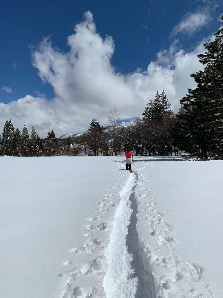 Lone snowshoer at Bear Valley.
