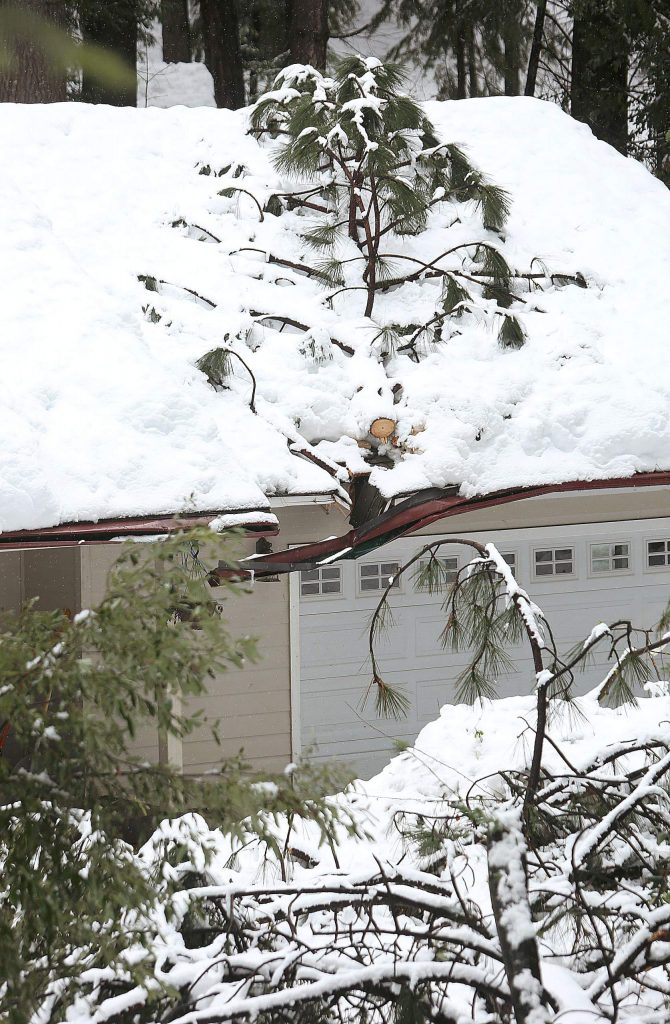 A fallen tree rests on the roof of this Cascade Shores garage. Reports of trees crashing through properties came in throughout the Cascade Shores community. Some said this is the hardest snow to hit the area since the late 1980s.