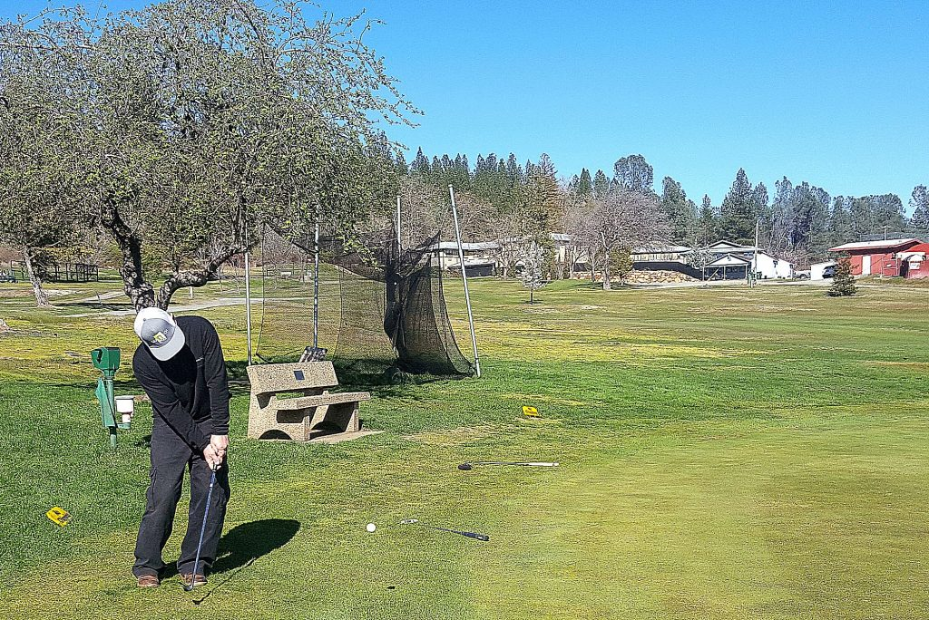 Bill Thornton, in town visiting relatives from Lake Tahoe, takes advantage of the sun to practice his chip shot at the putting green of Nevada County Country Club Monday afternoon.