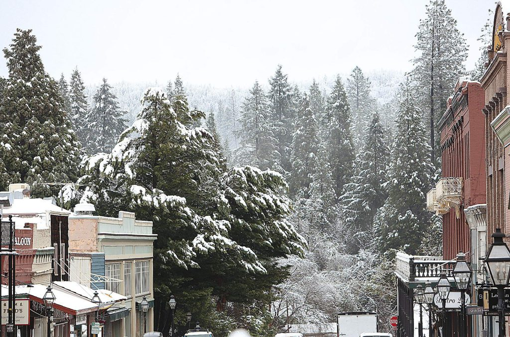 Nevada City's historic skyline included the snow laden limbs of surrounding trees Monday morning.