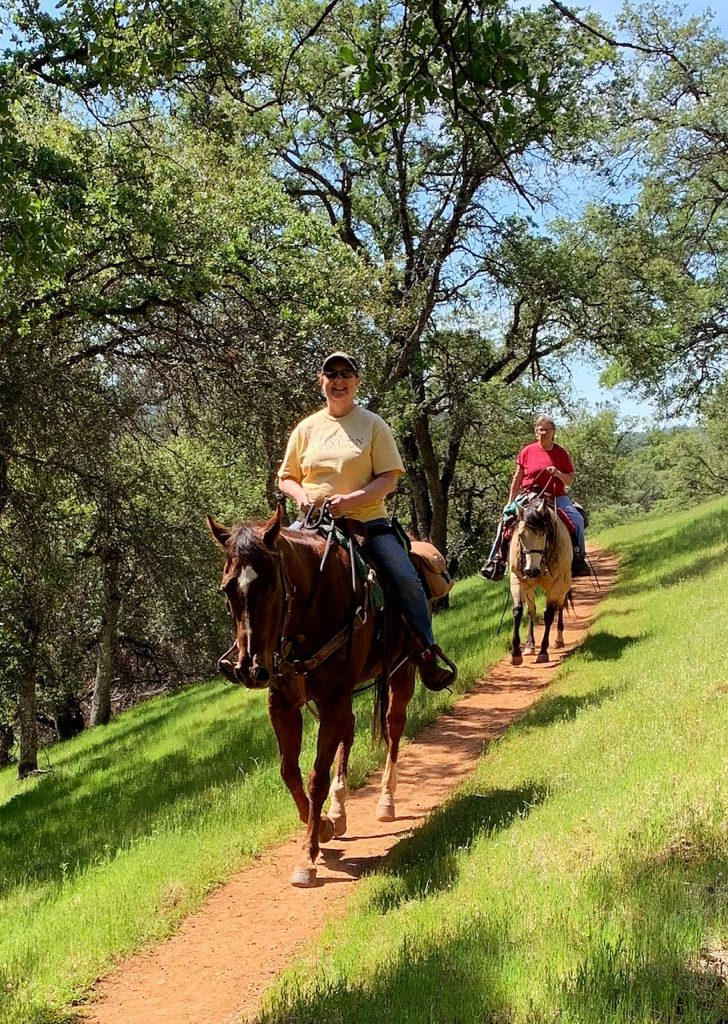 Horses on the trail in Spenceville wildlife preserve.