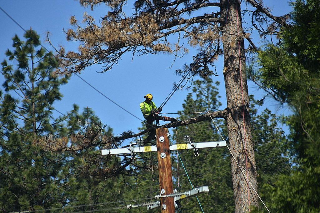 Tree workers on Greenhorn Road April 16.