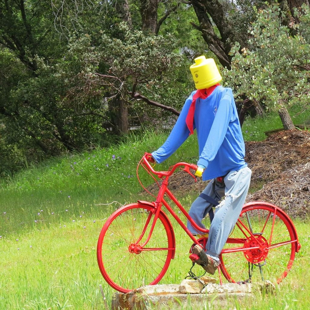 Outside of Lake of the Pines was this guy on his bike.