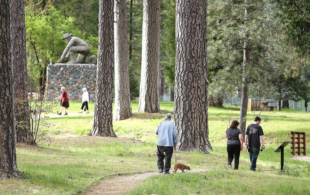 Groups of people take to the trails of Condon Park with their dogs Saturday. Condon Park in Grass Valley and Pioneer Park in Nevada City were both reopened to the public in limited capacity. Only the trails of both parks are open, all other park facilities including bathrooms, playgrounds and BBQ areas remain closed.
