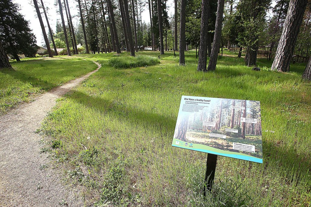 Interpretive displays border the trails of Condon Park in Grass Valley, which are now accessible to the public as closures due to COVID-19 begin to lift.