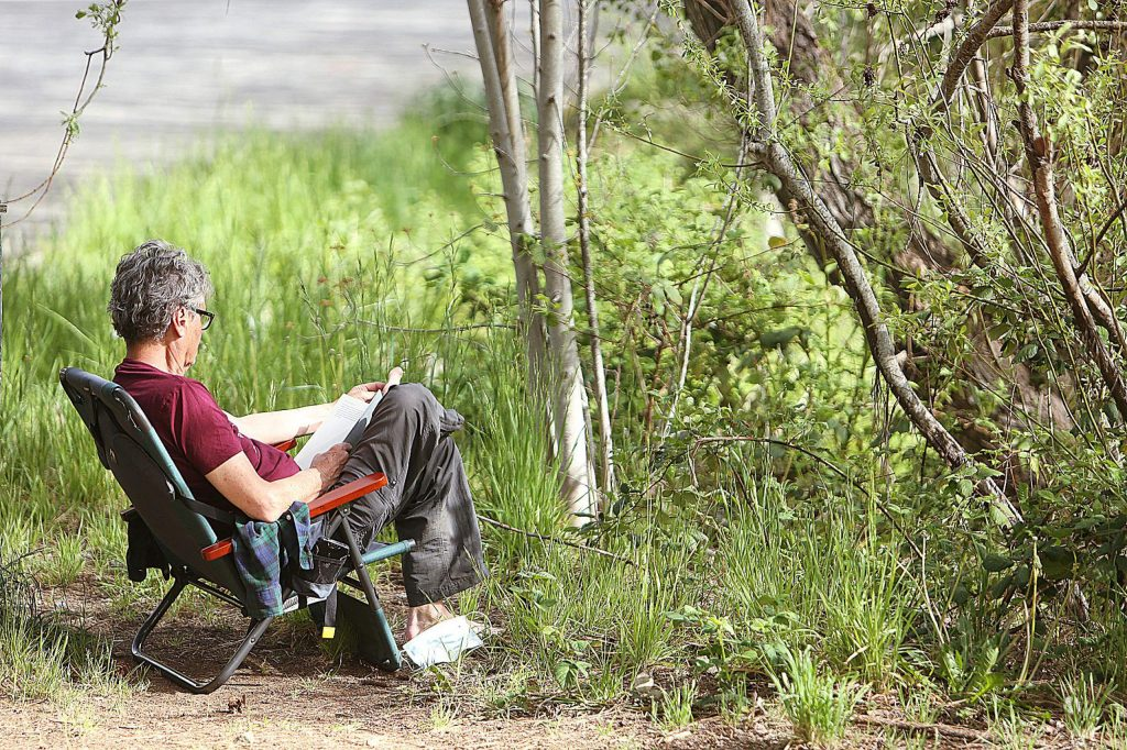 A man reads a book off of a pathway in Pioneer Park Saturday.