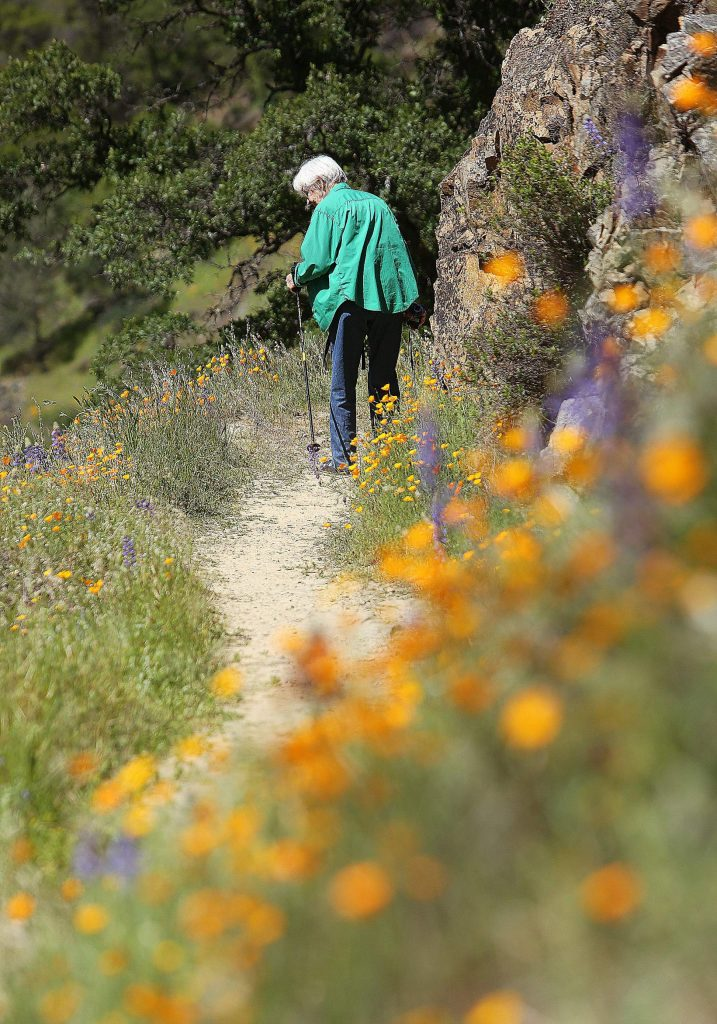 A day hiker along the Buttermilk Bend trail pauses to take in the wildflower displays Tuesday when users along the trail were scant, making it easier to social distance.