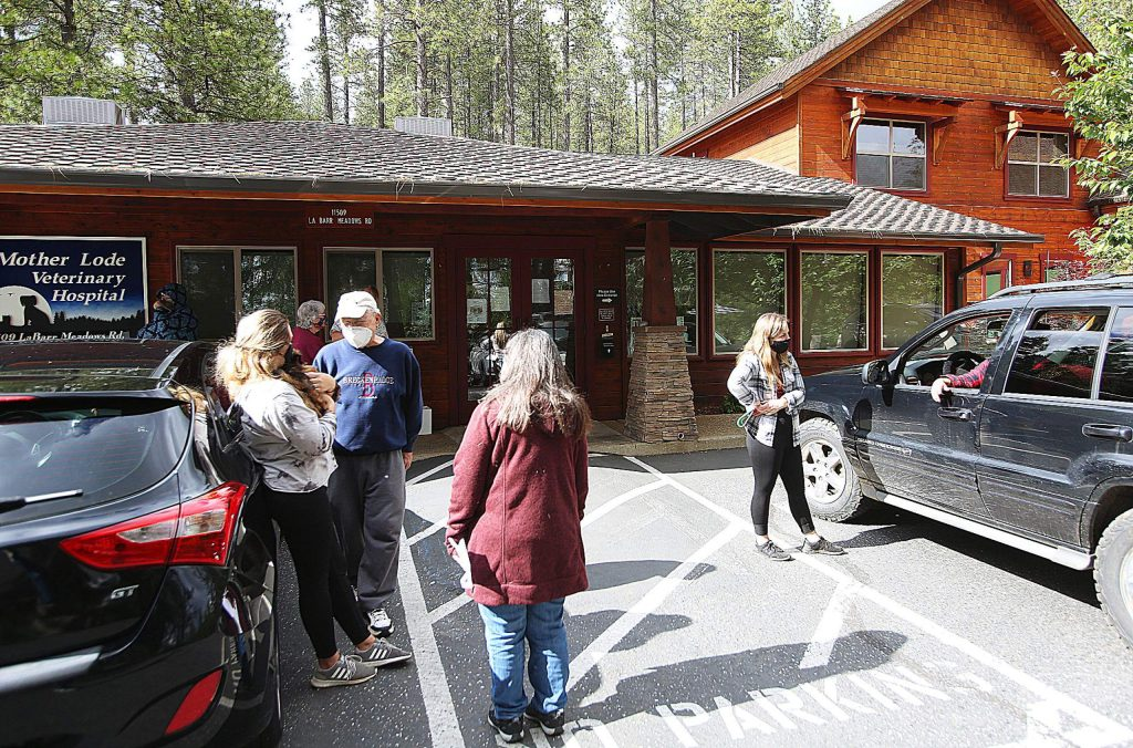 Veterinarians at Mother Lode Veterinary Hospital in Grass Valley greet clients and their animals in the parking lot to help keep exposures to a minimum inside the building where only staff and animals are allowed.