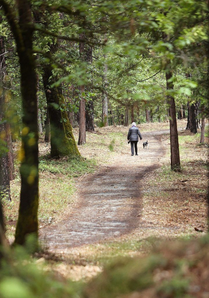 A trail user walks her dog along the section of trail that connects Reward Street with Deer Creek. This trail was recently choked with vegetation until the Deer Creek Southside Firewise community formed to rid the neighborhood of the hazard.