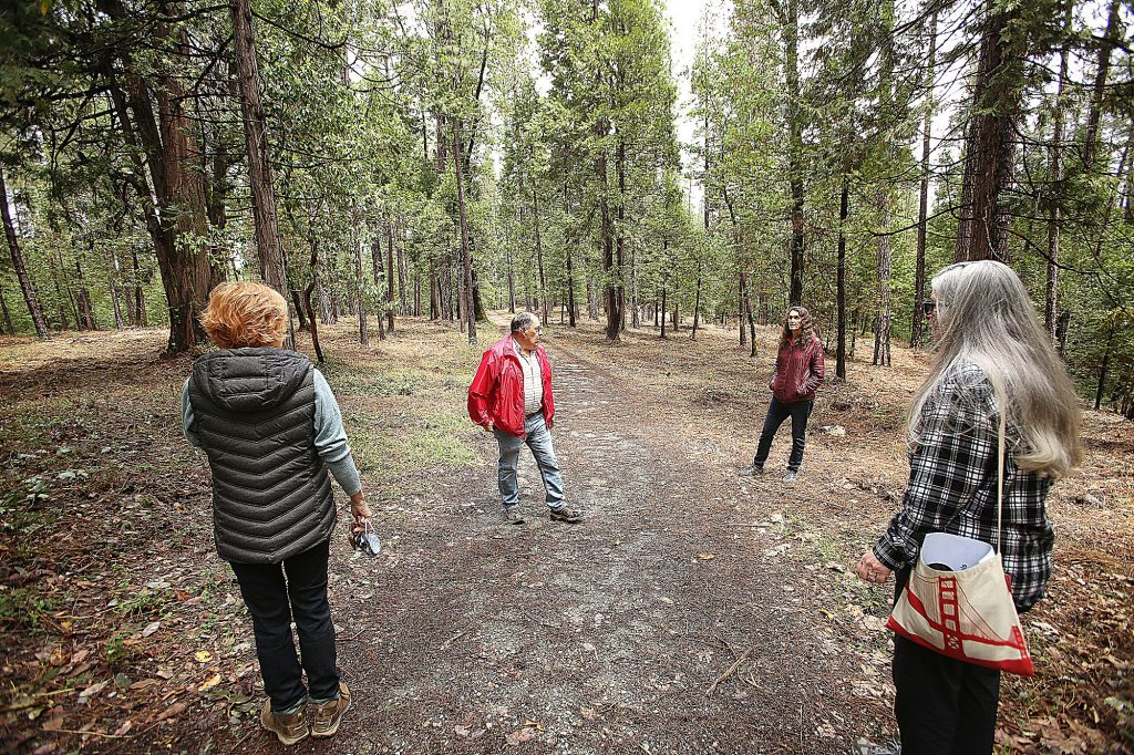 Members of the Deer Creek Southside Firewise Community, in conjunction with Jahlibyrd, stand in a section of trail recently masticated for fire prevention behind St. Canice off Reward Street in Nevada City.