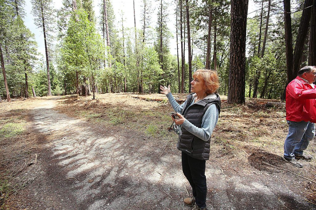 Southside Deer Creek Firewise Community's Lorraine Gervais shows off an area of trail that has been recently masticated near Reward Street. Vegetation previously choked the trail shown.