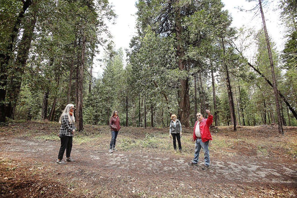 Members of the Deer Creek South Side Firewise Community committee stand in an area of trail behind Reward Street that was once choked with dangerous vegetation.