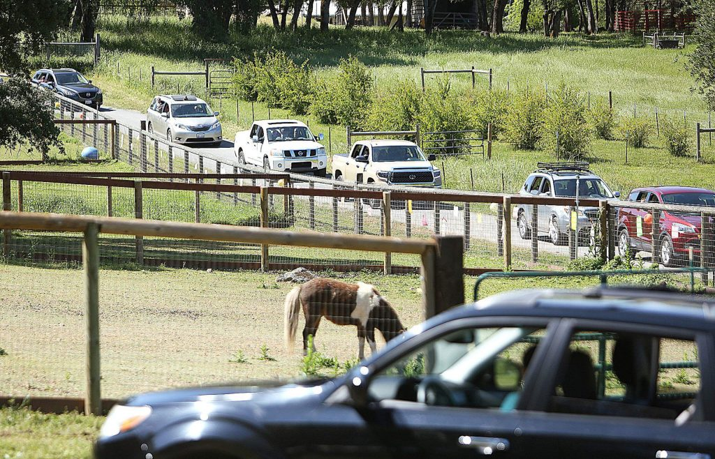 Vehicles make their way around the equine sports therapy facility.