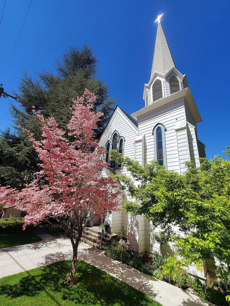 Spring blossoms of the Dogwood tree surround the Holy Trunity Church in Nevada City.