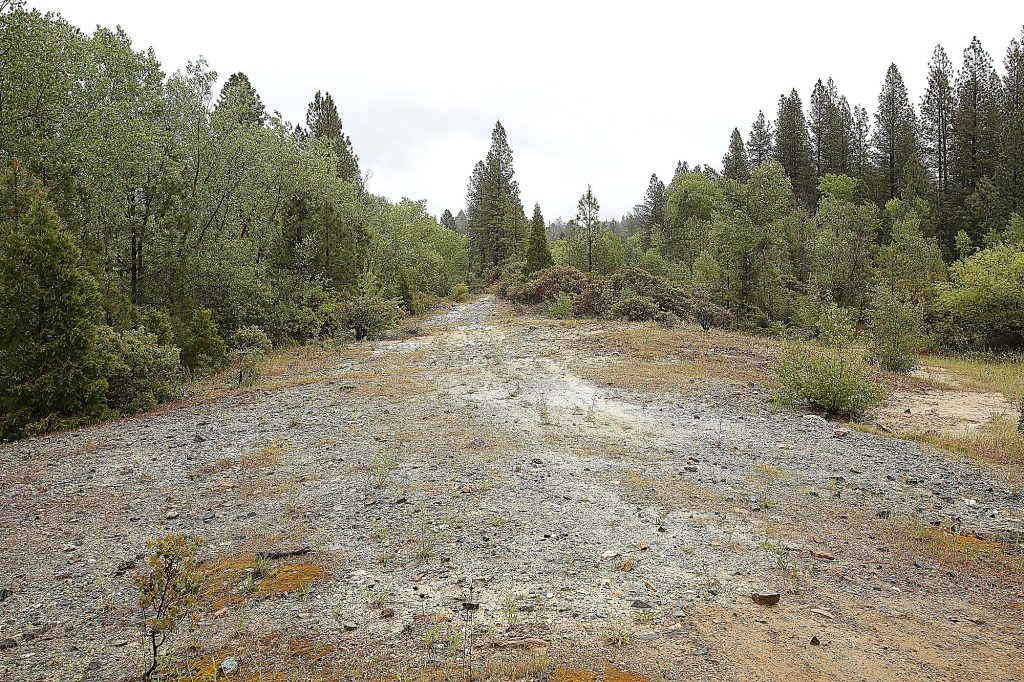 An arsenic laden tailing berm from Grass Valley's historic Centennial Mine off of Idaho Maryland Road, is slated to be remediated by Rise Gold if plans to reopen the Idaho Maryland Mine move forward.