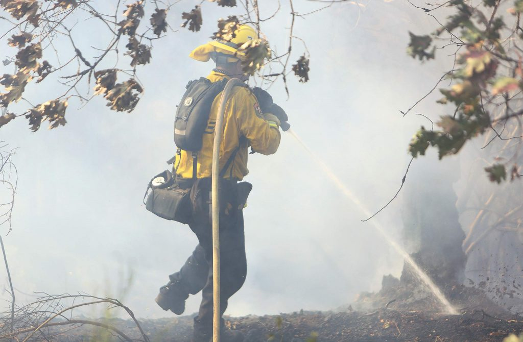 A Cal Fire firefighter helps with the mop up of the Wildwood Fire Monday afternoon near Penn Valley.