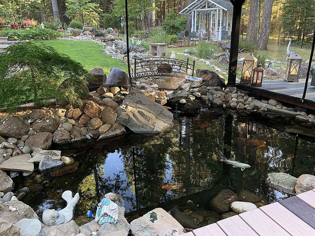 Getting yard work done while social distancing from the koi is working!