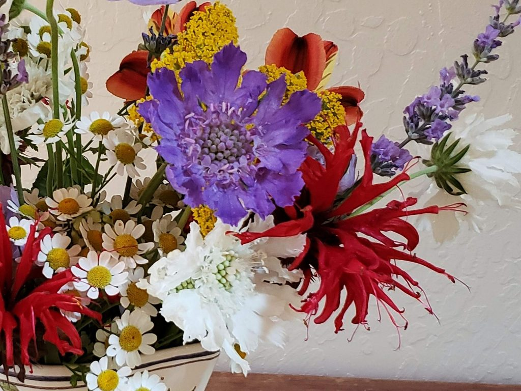 A Fourth of July themed bouquet featuring bee balm flowers.