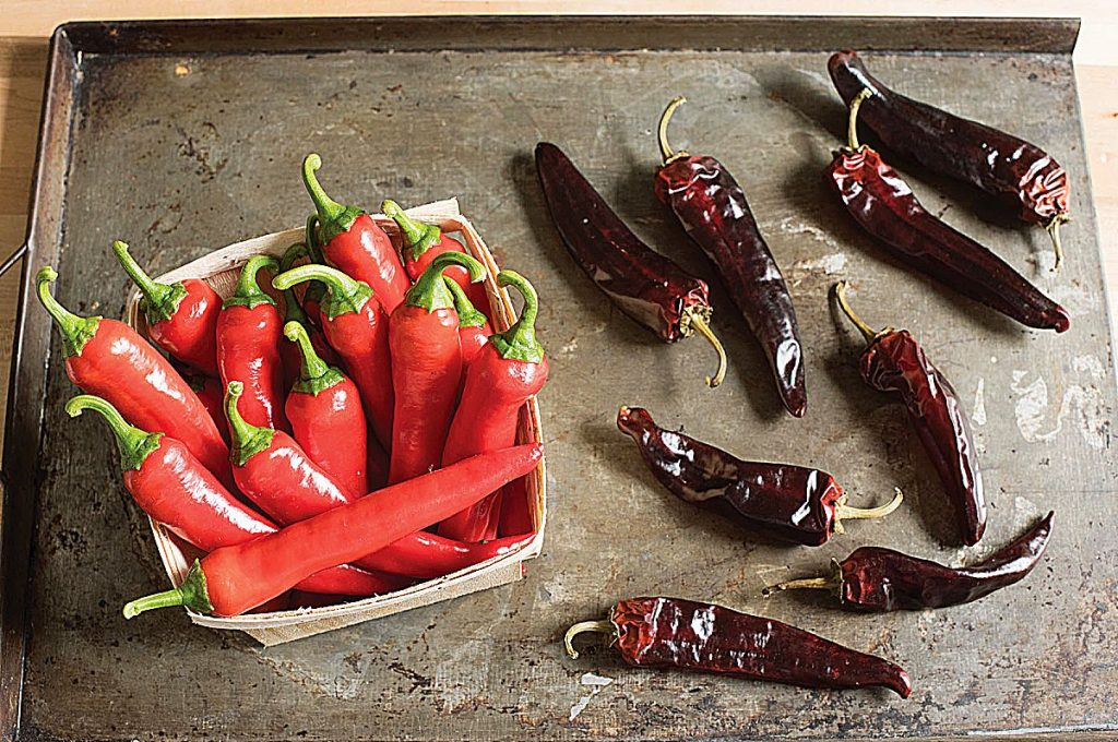 Red Ember F1 cayenne pepper is an All-America Selections (AAS) winner. Judges described this early maturing pepper as spicy, but tastier than traditional cayenne pepper varieties.