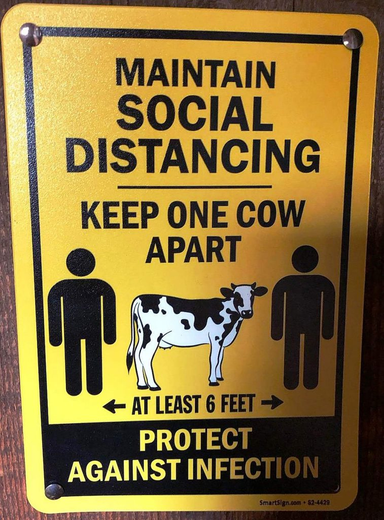 This sign reminds people to maintain the recommended six-foot social distance. Another consideration is at which end of the cow to stand.