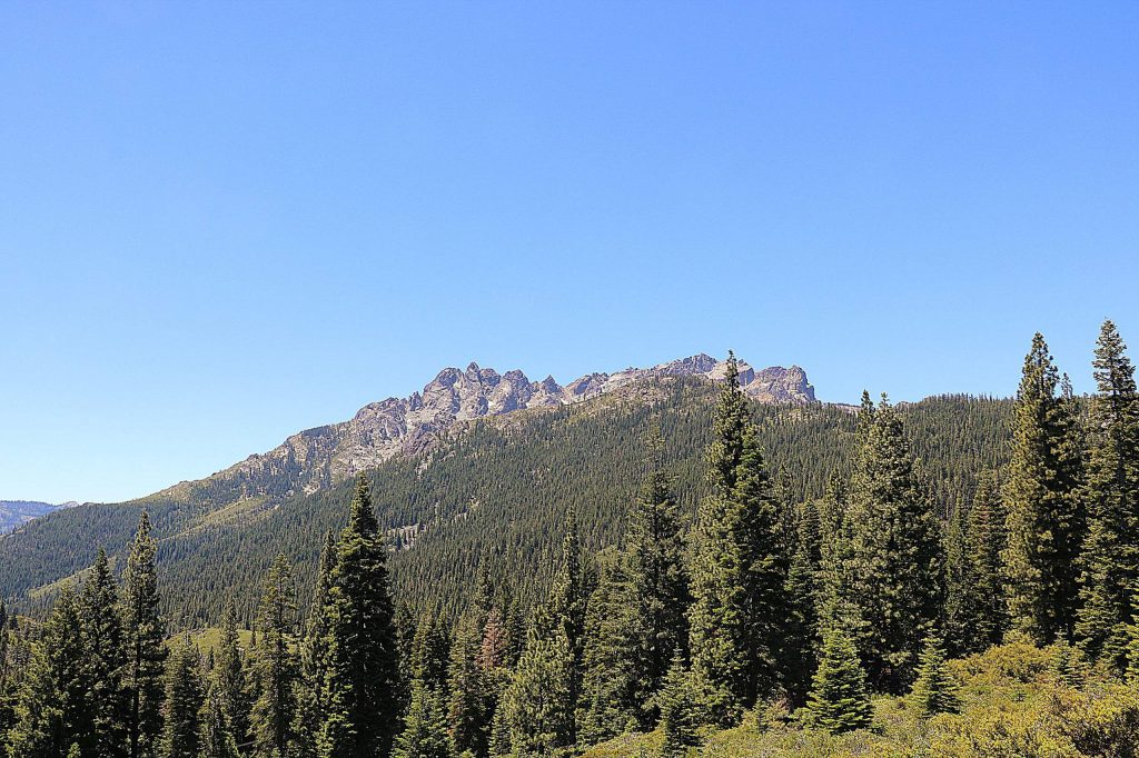 The Sierra Buttes trail is varied, going from exposed rocky switchbacks to pine and brush forest.