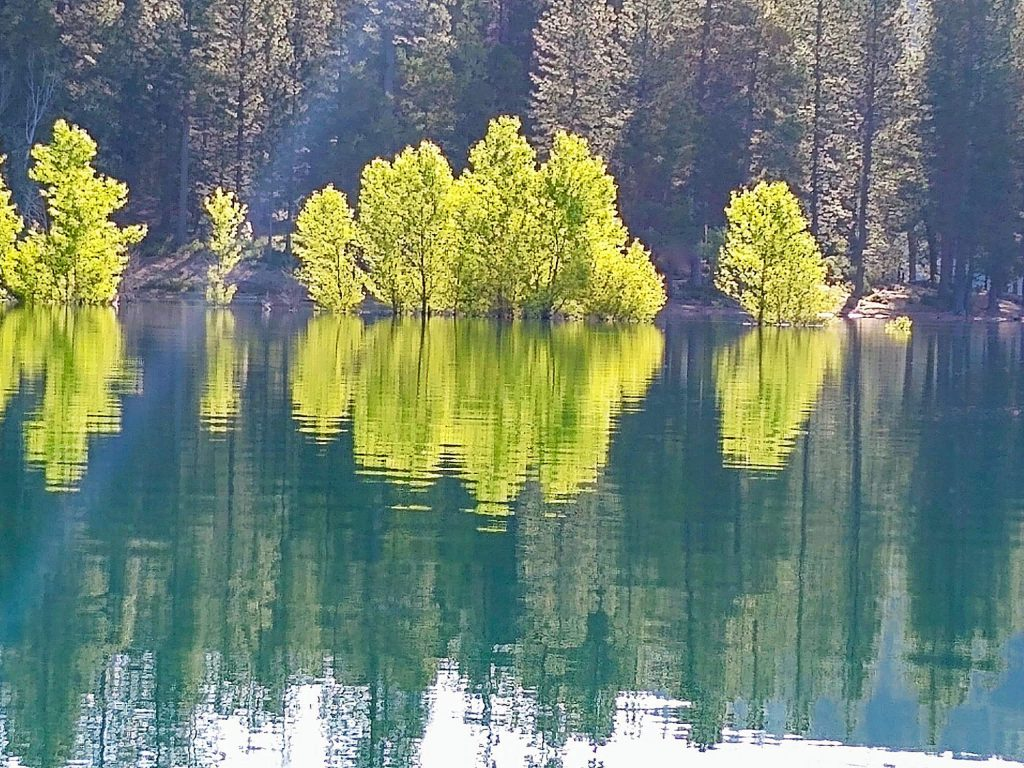 Early morning on Scotts Flat Lake.