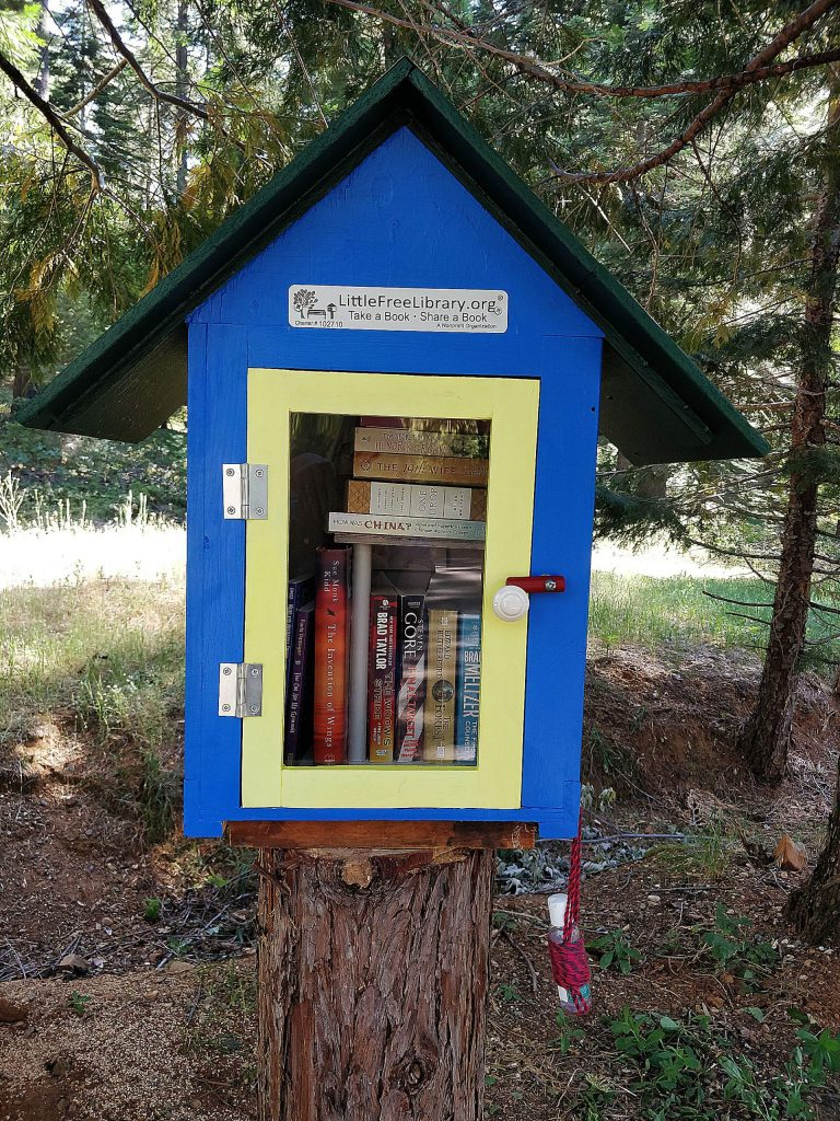 New little free library on Red Dog Road.