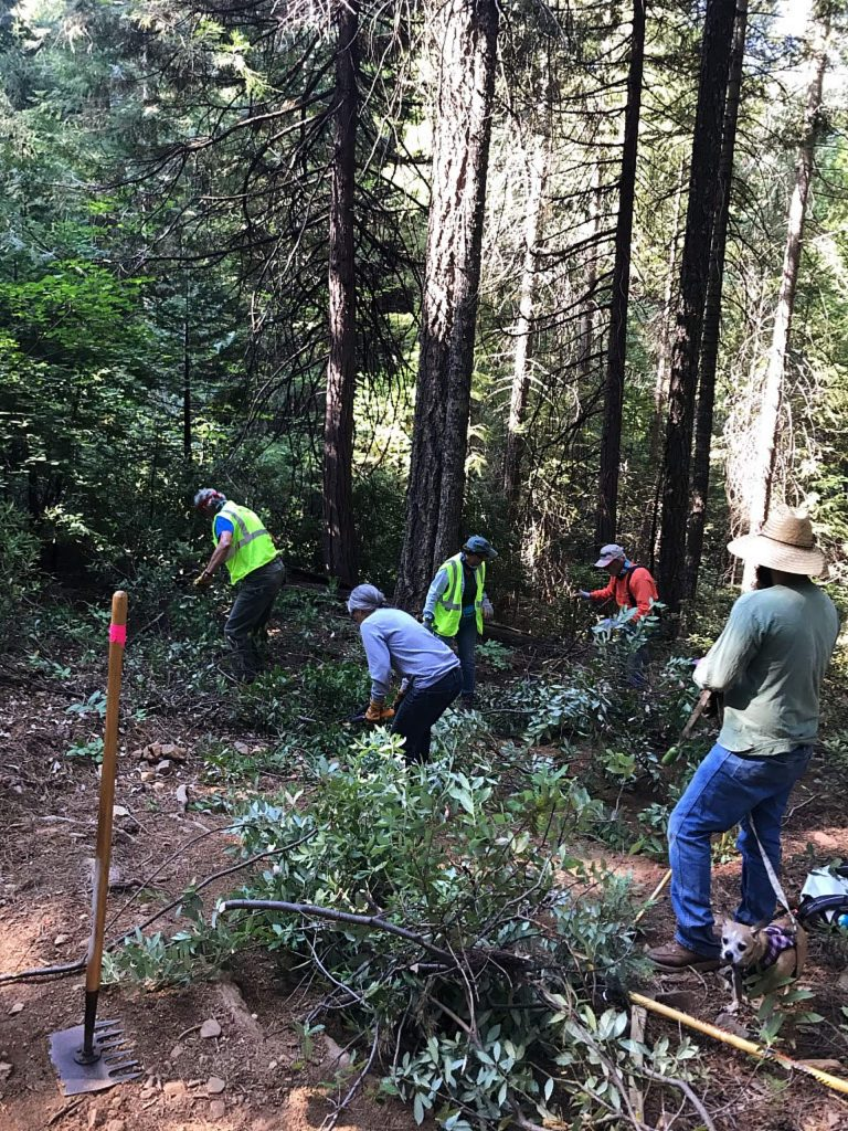 The Gold Country Trails Council dirt work crew repaired bad areas on the Pioneer Trail up above Skillman Campground.